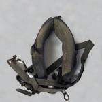 konsky-chomout-pred-restaurovani-2